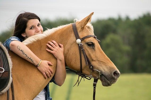 Artikel für Pferdeliebhaber